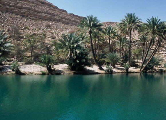 RTC Gruppenreise: 7 Tage Oman komfortabel
